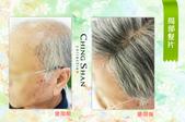 爸爸的手工假髮:青山假髮2.jpg