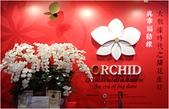 2016台灣國際蘭展圖片 -3-15-2016:DSCN1137-1.jpg