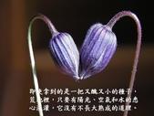 生命的要素..11-14-2013:投影片6.JPG