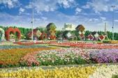 迪拜奇跡花園展覽-10-27-2015:2015-07-04_152526-10-27-16.jpg