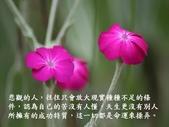 生命的要素..11-14-2013:投影片7.JPG