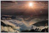 光照美景與金龍魚畫 -4-8-2016:20150401_195405_283-4-8-07.jpg