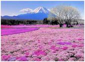心影-- 日本--9-8-2013:投影片6-1.jpg