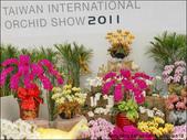 2011台灣國際蘭展 -2:DSCN0291-1.jpg