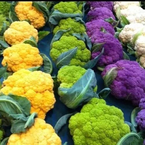 640-12-8-023.jpg - 見過彩虹蔬果嗎,今日大開眼界了-12-8-2016