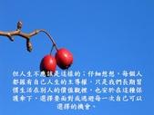 生命的要素..11-14-2013:投影片8.JPG