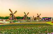 迪拜奇跡花園展覽-10-27-2015:2015-07-04_152426-10-27-21.jpg