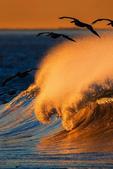 海浪 -10-17-2015:2015-08-22_093337 -10-17-01.jpg