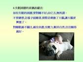 不覓仙方覓睡方 -9-10-2013:投影片15.JPG