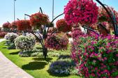 迪拜奇跡花園展覽-10-27-2015:2015-07-04_152744-10-27-10.jpg