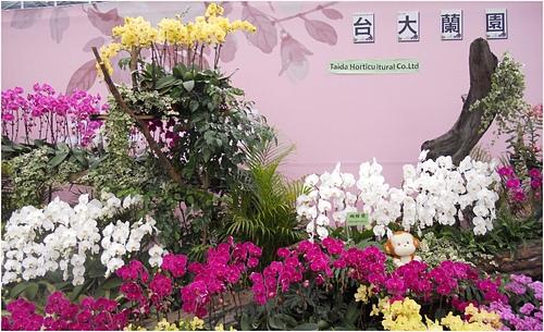 DSCN1160-1.jpg - 2016台灣國際蘭展圖片 -3-15-20156