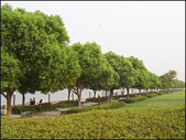 蘇州之旅遊:100_2582-1
