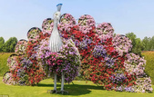 迪拜奇跡花園展覽-10-27-2015:2015-07-04_152455-10-27-19.jpg