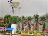 2011台灣國際蘭展 -2:DSCN0287-1.jpg