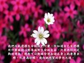 生命的要素..11-14-2013:投影片12.JPG