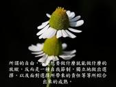生命的要素..11-14-2013:投影片13.JPG