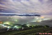 臺灣各月份風景 與 彩虹八色鶇-12-27-2013:12-27-11.jpg