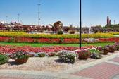 迪拜奇跡花園展覽-10-27-2015:2015-07-04_152850-10-27-6.jpg