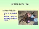 不覓仙方覓睡方 -9-10-2013:投影片3.JPG