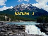 優美的自然圖片-8-21-2013:投影片1.JPG