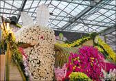 2011台灣國際蘭展-1:DSCN0276-1.jpg