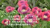 女王與畫家-12-4-2013:投影片6.JPG