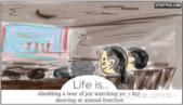 英文漫畫:人生的意義 -11-10-2015:0af55179-cff2-4ac1-a5d9-4790d60845c6-11-10-20.png