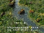 出自佛教的有趣成語 -11-8-2013:投影片16.JPG