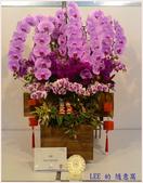 2018台灣國際蘭展照片(3/3~3/12) -3-8-2018:P_20180305_115222-a3.jpg