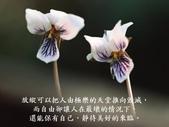 生命的要素..11-14-2013:投影片15.JPG