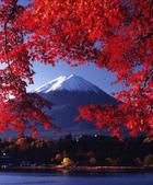 富士山景彩..-10-29-2015:2015-09-03_170113-10-28-05.jpg
