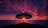 一起去看美麗的世界-1-5-2014:1-5-12.jpg