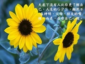 生命的要素..11-14-2013:投影片3.JPG