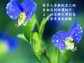 生命的要素..11-14-2013:投影片16.JPG