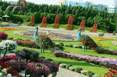 迪拜奇跡花園展覽-10-27-2015:2015-07-04_152657-10-27-13.jpg