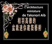 相羽高德的盆栽迷你建築藝術-12-3-2013:投影片1-1.jpg