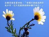 生命的要素..11-14-2013:投影片4.JPG