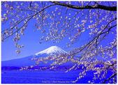 心影-- 日本--9-8-2013:投影片5-1.jpg