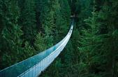 橋在景中 -7-21-2015:2015-07-13_213703-7-20-17.jpg