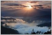 光照美景與金龍魚畫 -4-8-2016:20150401_195405_279-4-8-03.jpg