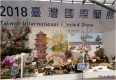 2018台灣國際蘭展照片(3/3~3/12) -3-8-2018:20180305_123316-a2.jpg