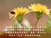 生命的要素..11-14-2013:投影片18.JPG
