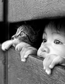 娃娃與動物 -11-24-2015:2015-09-18_220654-11-24-16.jpg