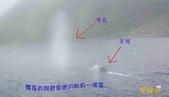 鯨魚:2012022501.jpg