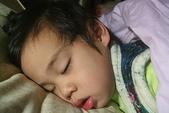 2011 1:2011 1 31午睡.JPG