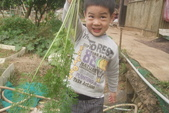 2012 3:2012 3 29拔紅蘿蔔 (56).JPG