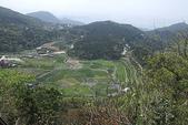 2011 4:2011 4 8陽明山 (11).JPG