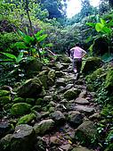 2009-0712-再訪小粗坑古道&石牛山驚險行:05-後半段為石子路&小拉繩.jpg