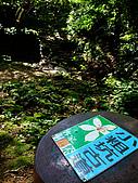 2009-0712-再訪小粗坑古道&石牛山驚險行:01-小粗坑古道~~我們又來囉.jpg