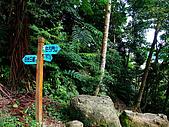 2009-0712-再訪小粗坑古道&石牛山驚險行:07-抵達古道終點~續往石門山.jpg
